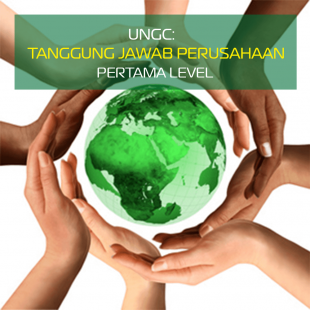 UNGC 1 ID